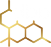The Disruptive Business Partnership Logo